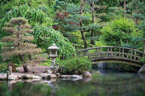 piante per giardino giapponese giardini giapponese giardini orientali