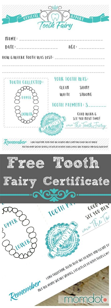 tooth certificate template free tooth printable certificate printable