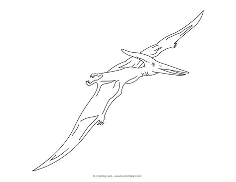 free coloring pages of pterodactyl cartoon