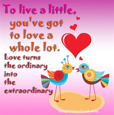 images of love phrases love bird quotes and sayings quotesgram