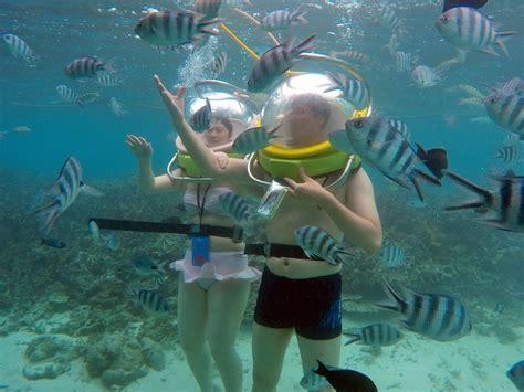 under water activity book 1783707704 aquaventure ltd undersea walk