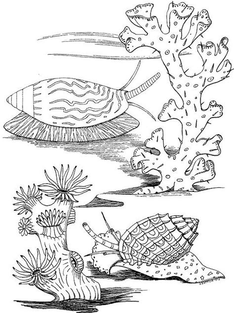 ocean animals coloring pages for adults seascape ocean coloring page