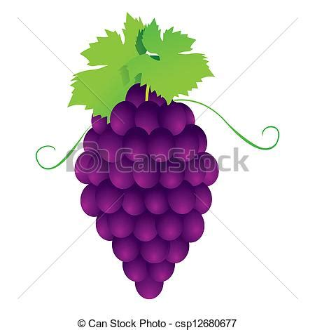 imagenes animadas sobre uvas ilustraciones vectoriales de uvas vector ramos el