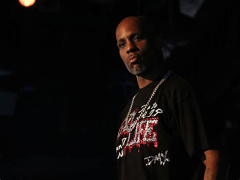 dmx house dog boarding facility says dmx abandoned pit bull puppy hiphopdx