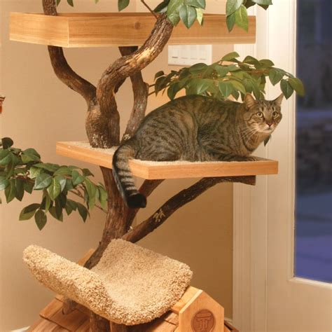 cat tree house plans free cat tree house plans numberedtype