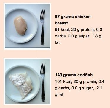 How Much Is 200 In What Does 20 Grams Of Protein Look Like Starter Steps