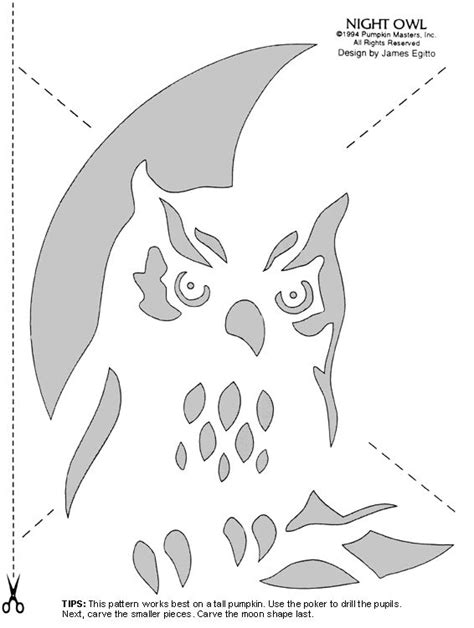 owl pumpkin template best 25 pumpkin carving patterns ideas on