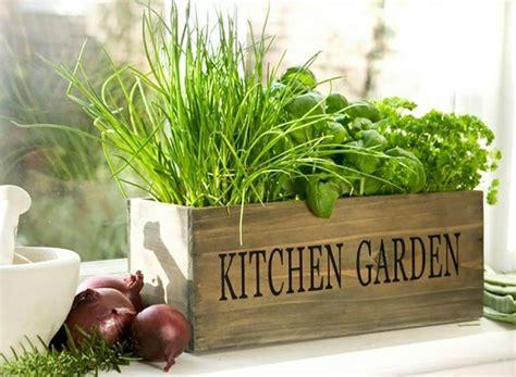 kitchen gardening ideas mini jardini 232 res et pots d int 233 rieur aux herbes aromatiques