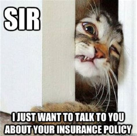 Insurance Meme - insurance humor on pinterest funny bumper stickers