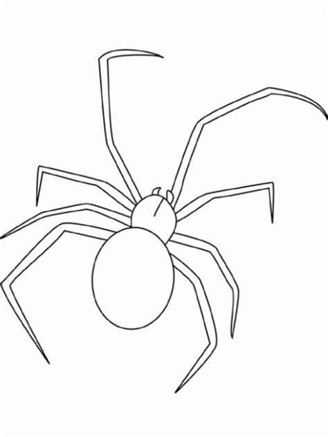 Spider Coloring Pages Coloring Lab Spider Coloring Page