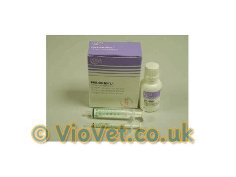meloxidyl for dogs meloxidyl meloxidyl liquid meloxidyl for dogs