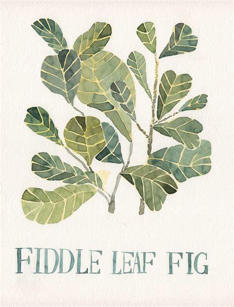 fiddle leaf fig fiddle leaf fig original watercolor painting