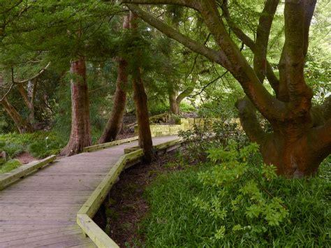 botanical garden sf interstice architects 187 sf botanical gardens pathways