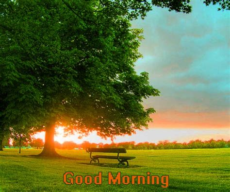 good morning images photo wallpaper picture