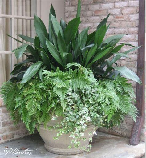 25 best ideas about large flower pots on