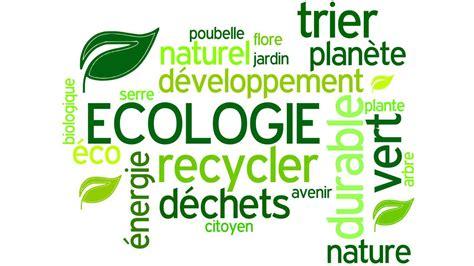 Les Fran 231 Ais Se D 233 Sint 233 Ressent De L Environnement