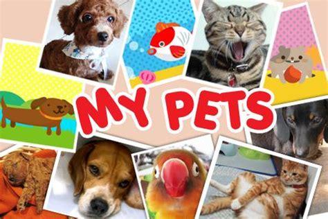 My Pet my pets play softwares asopg6qw0msj