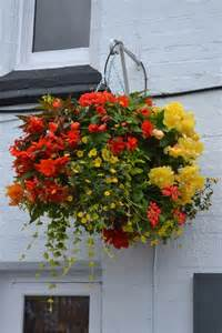 17 best ideas about hanging flower baskets on