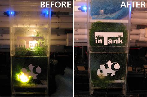 best led refugium light intank submersible refugium light is ingeniously simple