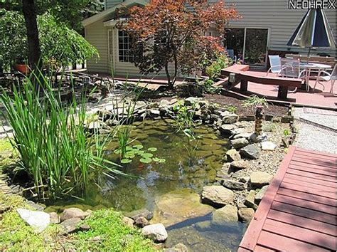koi pond bridge bridge over koi pond backyard pinterest