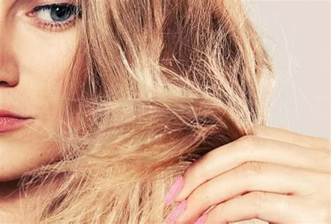ammonia free hair color brands why ammonia is bad for your hair ammonia free hair color