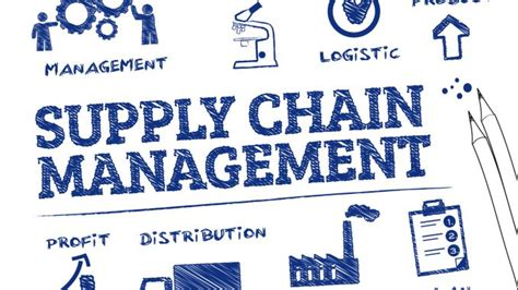 Mba Vs Supply Chain Management by Die Wachsende Bedeutung Beschaffungs Und Supply Chain