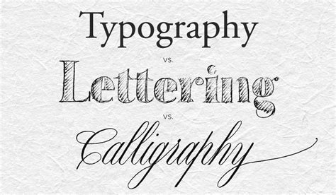 typography and lettering the difference between calligraphy lettering and type chavelli tsui