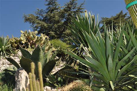 giardini fantastici archi e giardini fantastici nei dintorni di nizza gli