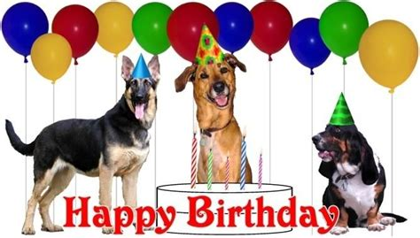 Happy Birthday Clip With Dogs Free by Happy Birthday Clipart With Dogs Clipartxtras