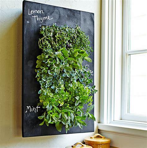 simple ways  create  indoor vertical garden   home