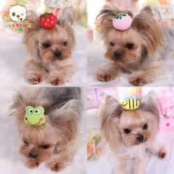 hair accessories for yorkie poos yorkshire terrier and poodle 3d hair accessories pet