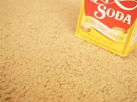 Baking Soda For Carpet How To Clean Vomit From Carpet With Baking Soda 5 Steps