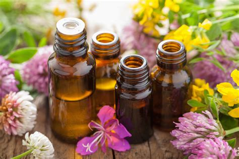 Essential Oils by The Best Anti Wrinkle Essential Recipe