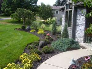 home landscape plants that improve landscape and home security