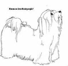 havanese dog coloring page this metal havanese statue was donated by cheryl