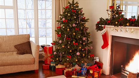 why is a christmas tree a tradition why do we trees the story the festive tradition bt
