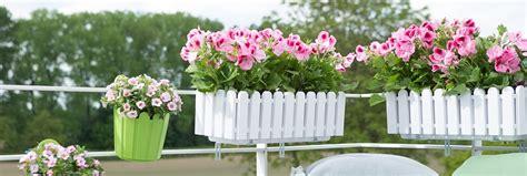 fiori per vasi da balcone balconi fioriti un esplosione di mille colori e profumi