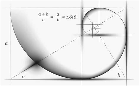 golden section golden ratio a theme for wordpress whale kit