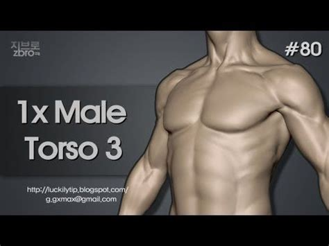 zbrush tutorial human body 368 best images about zbrush on pinterest