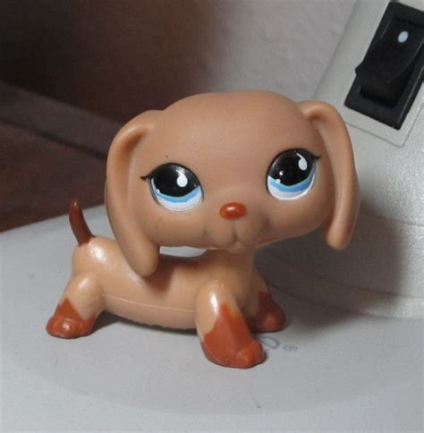lps wiener dogs littlest pet shop images dachshund 518 wallpaper and background photos 34132719