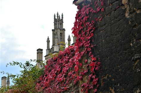 Autumn In Oxford autumn in oxford the talking suitcase