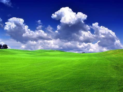 fondo pantalla prado naturaleza fondo pantalla prado verde