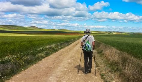 il camino di santiago novit 192 il cammino di santiago a piedi estensione