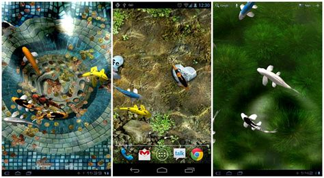 koi free live wallpaper full version for pc 10 free live wallpapers you should try