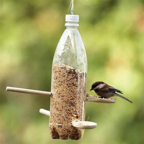 Pop Bottle Bird Feeder bird feeding 101