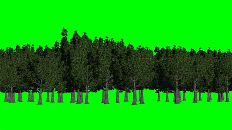 Forest Green Screen Background Green And Blue Free Green Screen Youtube Green Screen Templates