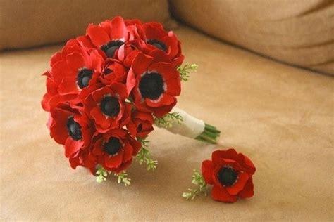 anemone fiore significato anemoni fiori bulbi anemoni bulbi fiori