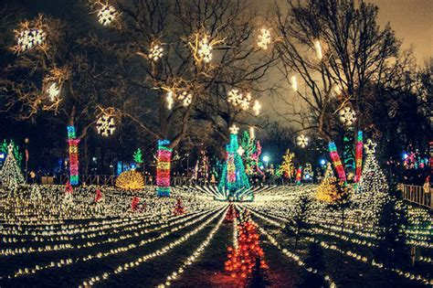 Lincoln Park Zoolights Starts Friday With Two Million Zoo Lights Chicago