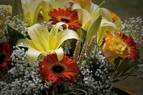 fiori per la festa della mamma festa della mamma regalale un fiore con il significato