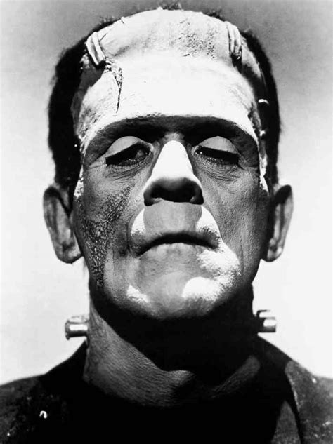 frankenstein how a became an icon the science and enduring of shelley s creation books i advocate feminism a mini blogzine of frankenstein